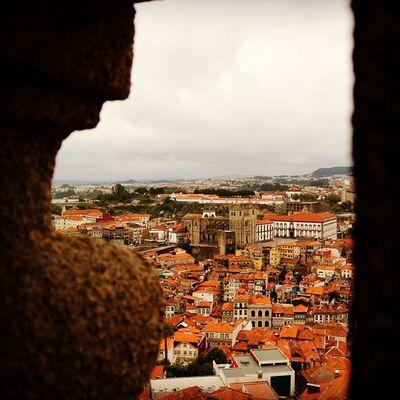 #igers_porto #igers #p3top #iphone5 #iphonesia #iphoneonly #iphonegraphy #instagood #instagram #instalove #instamood #portugal #porto #instagramers #instamood #torredosclerigos #oporto #porto2c #portugal #portugaligers #portugal_em_fotos #portugal_de_sonh Instagood Instalove Iphonegraphy Porto Portugaligers Igers_porto Portugal Portugaldenorteasul Iphoneonly Portugaloteuolhar Iphonesia Porto2c Instagram Sedoporto IPhone5 Portugal_em_fotos Oporto Ig_portugal Instamood P3top Torredosclerigos Igers Portugal_de_sonho Instagramers