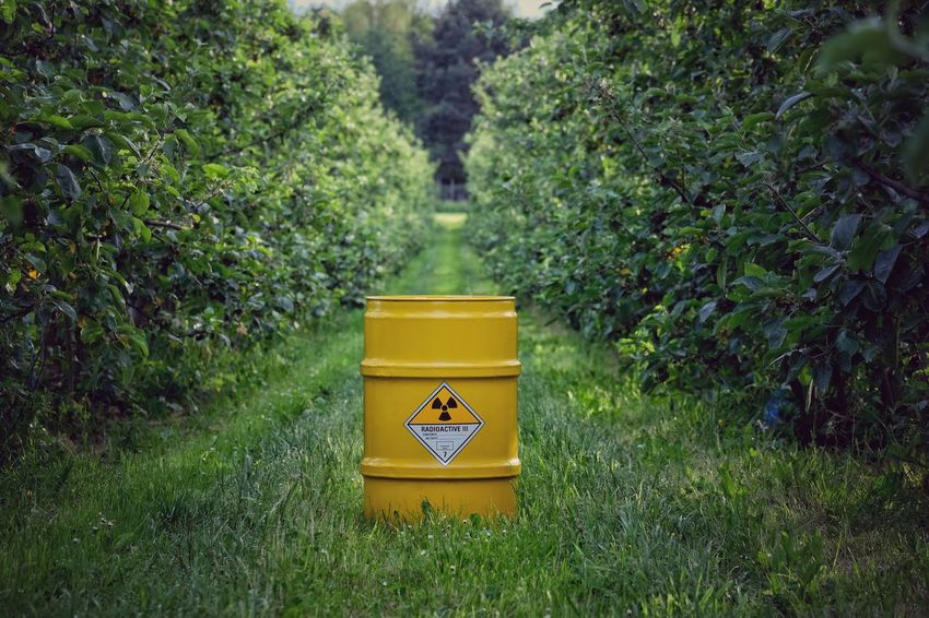 Yellow Day Outdoors No People Plant Green Color Growth Nature Grass Tree Plantation Plantage Poison Barrel Fass Apple Apple Tree Radioactive Green Germany