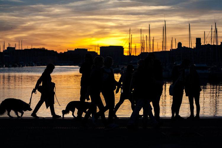 Silhouette of people with dog on river at sunset