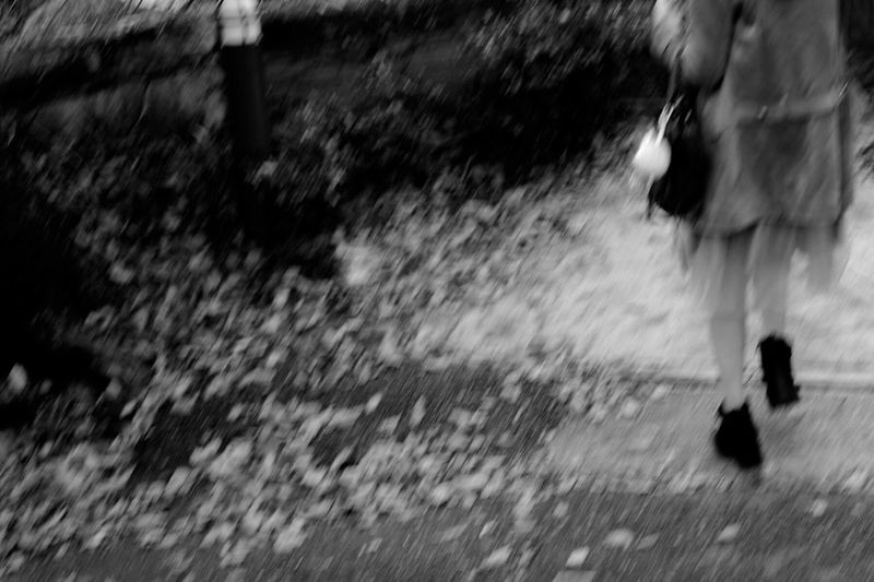 Woman Leaf Leaves Sloping Road Black And White Monochrome Street Photography Blur