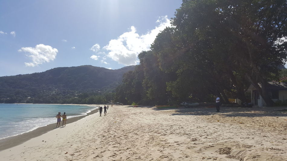 Beach Sand Tree Nature Water Day Sky Outdoors Sunlight People Beauty In Nature Sea EyeEm Selects Tourist Seychelles Seychelles Islands Island Paradise Scenics Sunny Tranquility Seychellesisland Tranquil Scene No Filter, No Edit, Just Photography nofilters naturebeautiful amazing