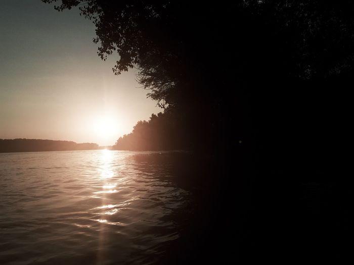 Sunset on Danube Water Sunset Beach Tree Silhouette Summer Sky Landscape