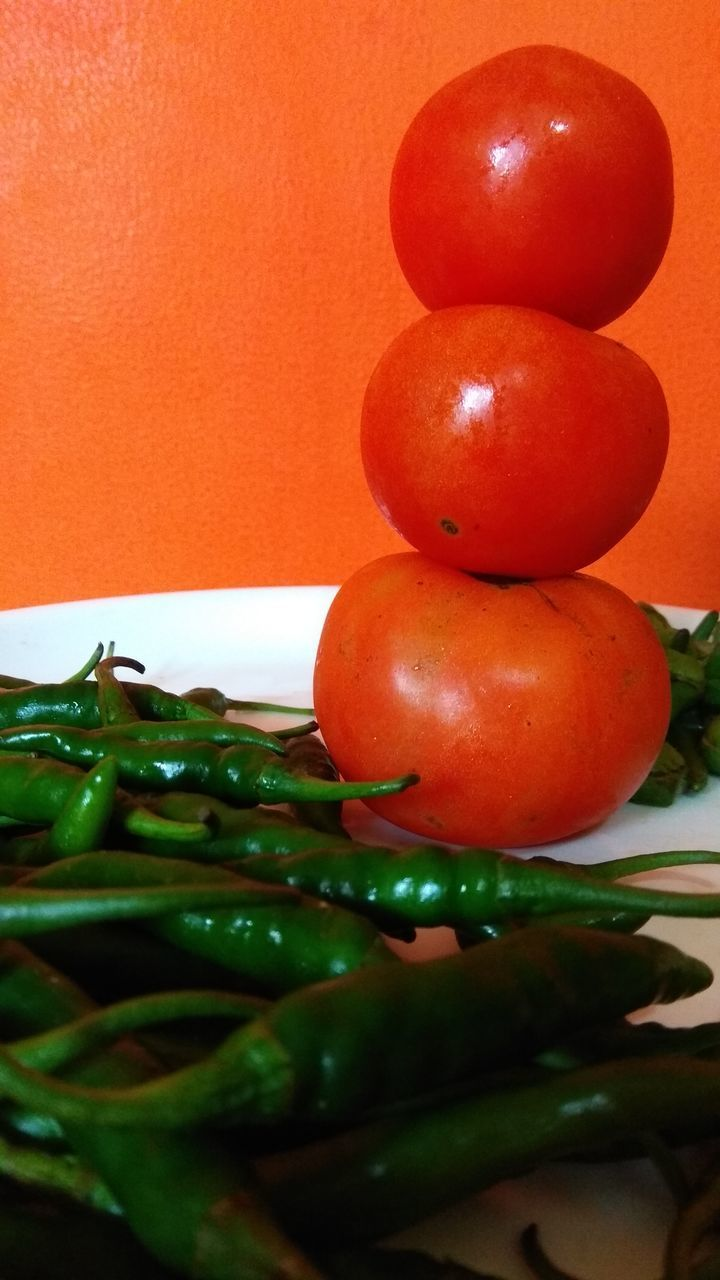 CLOSE-UP OF TOMATOES GROWING ON TABLE