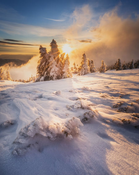 Scenic view of snow covered field against sky during sunset in vladeasa mountains