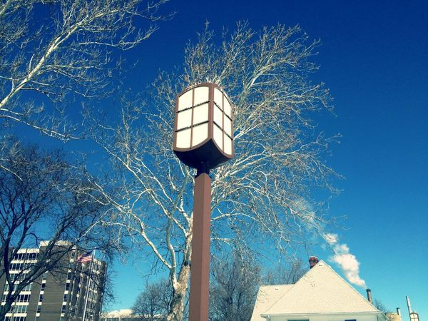 Taken in winter time along the Wyandotte river front. Architecture Cold Light Outdoors Street Street Light Tree Winter