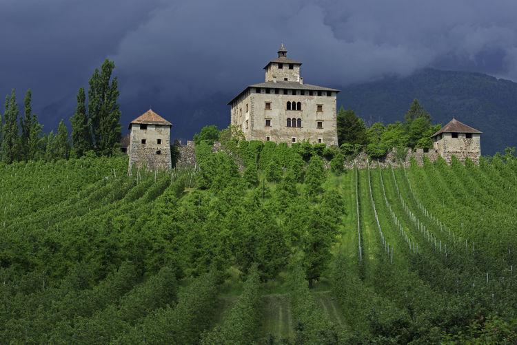 Castle Trentino