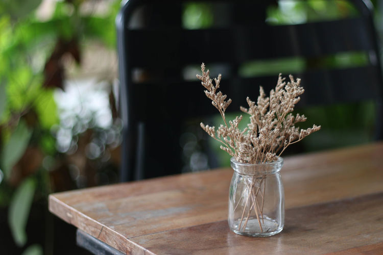 Cafe Close-up Day Drinking Glass Flower Flower Head Freshness Horizontal Indoors  Jar Lavender Nature No People Table Vase Water Wood - Material