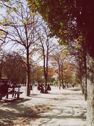 Le jardin de Luxembourg Paris France oct/2012 Taking Photos Paris Afternoon Walk