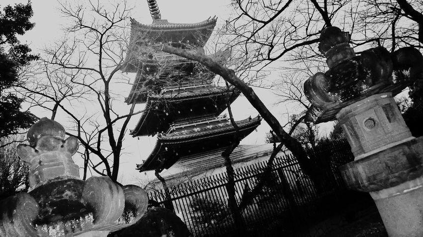 Tokyo,Japan Black And White Monochrome Blackandwhite Photography Cityscapes Hi! Cytywordwide Hello World Arquitecture Blackandwhitephotography