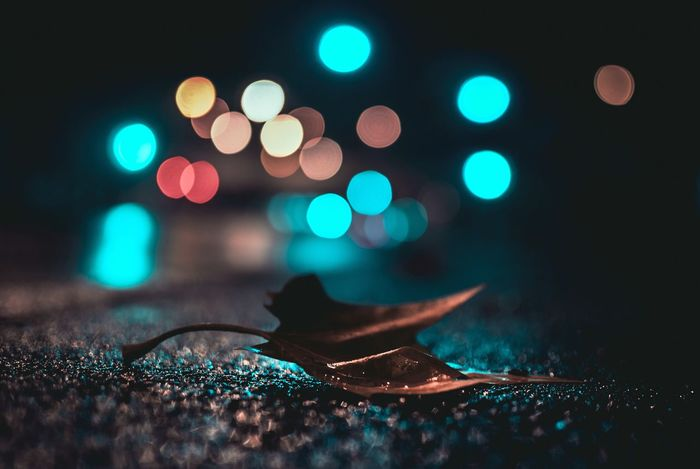 Night Defocused Close-up Complementary Colors Leafphotography Moody Bokeh Photography Bokeh Bubbles Colors Bokeh Nikkor 35mm F/1.8G Leaf 🍂 Compositon Fallen Leaf Outdoors Fall Colors Fall Season Leaf Illuminated No People Colorful Bokeh Light Moody Fall Colors Wet Visual Creativity
