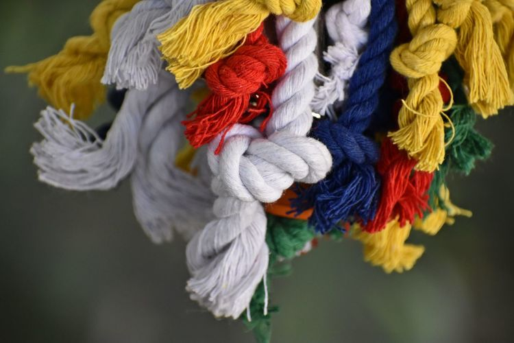 Close-up of multi colored decoration hanging