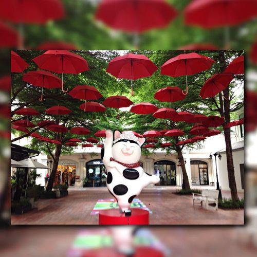 เทพเจ้าขอฝน Monday 29Jun15 Japanese Festival