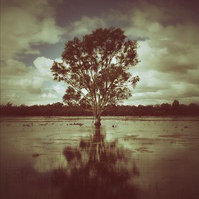 Flood. #roadtrip Roadtrip Lachlanpayneawesomeamazingphotosbestinstagramereverfollowmenow Payneroadtrip