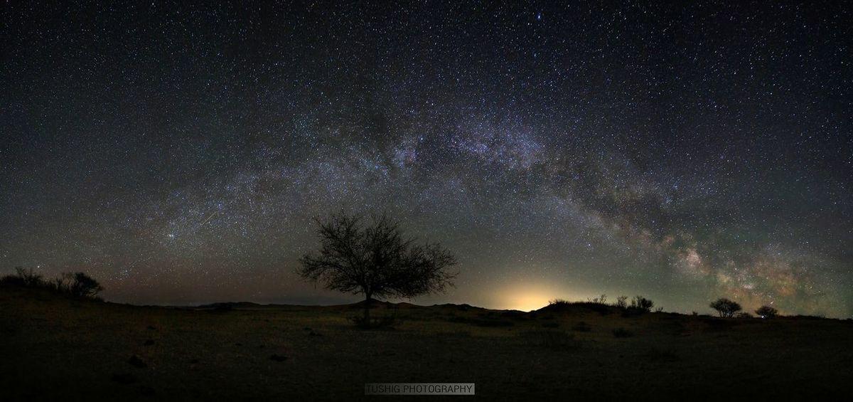 Milkyway Milky Way Astrophotography Tree Sand Nightphotography Landscape Landscape_photography Landscapes Mongolia