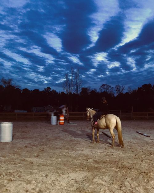 Evening lessons Sunset Riding Lesson Night Sky Sky Horseback Riding Outdoors Night