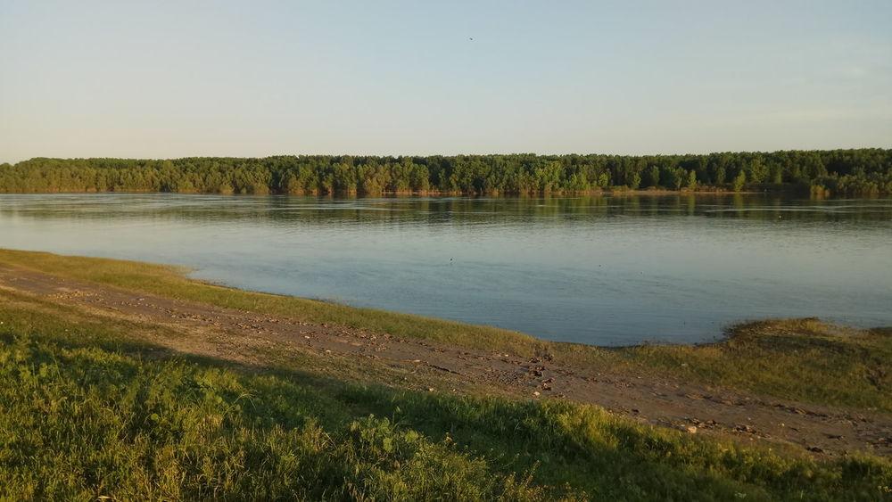 Danube river Nature River Danube Spring Water Tree Reflection Flood Sky Grass Landscape