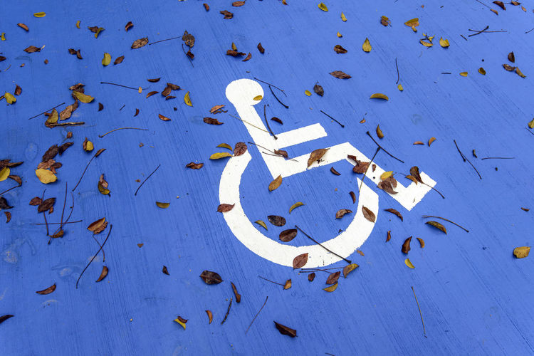 High angle view of fallen leaves on disabled sign