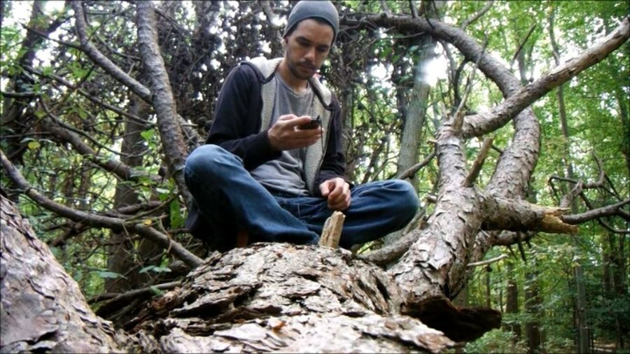 Up a tree 😊 Camera = Fuji XP55No Edit/no Filter EyeEm New Jersey Purist New Jersey Photography Tri State Photography New Jersey