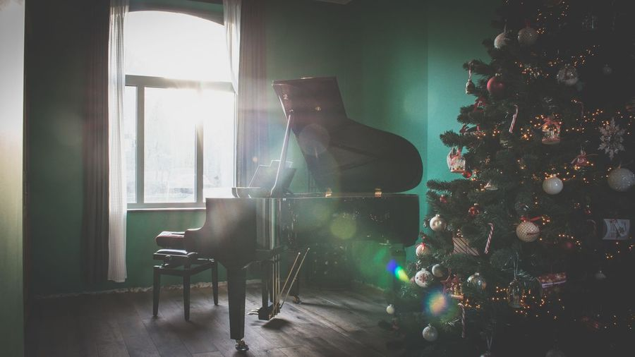 Window Indoors  Full Length Domestic Room Tree Piano Music Living Room Christmas Tree Lensflare Classical Music Musical Instrument Home Interior Arts Culture And Entertainment Indoors  NikonD800 Sunflare Theholidays Music Brings Us Together Music Traveling Home For The Holidays Piano Moments