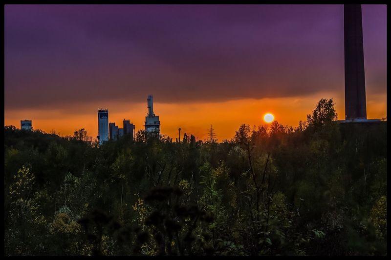 Meiderich Lost Lostplaces Lost Places Urbex Urbexphotography Vergessene Orte Vergessen Vergessenerort Sinterwerk Sinteranlage Sun Sunsets Sunrise Sunlight