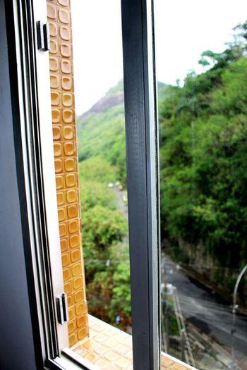 Conceitual Canon Canonphotography Canon_photos EyeEmNewHere Iamnewhere Iamcanon Janela Arquitetura ArquiteturaeUrbanismo Window Door Open No People Looking Through Window Day Tree
