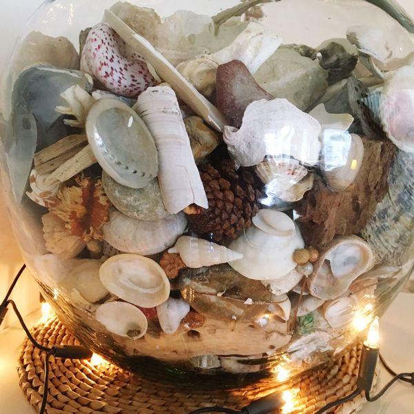 Interior Views Seashore Treasure Treasures