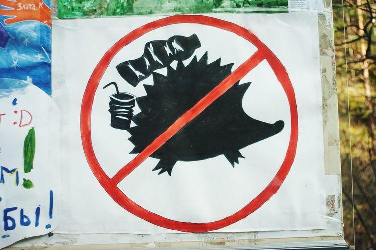 Ecology Kids Handmade Social Studies Stop Garbage