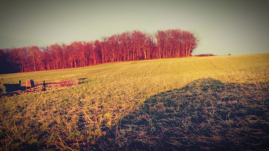 Living in the country 😝💯😊🔥☀🌄 First Eyeem Photo