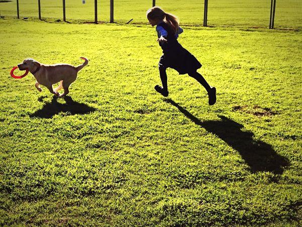 Chase Green Grass Dog Girl Childhood Running Shadow Labrador Miltonbiscuit