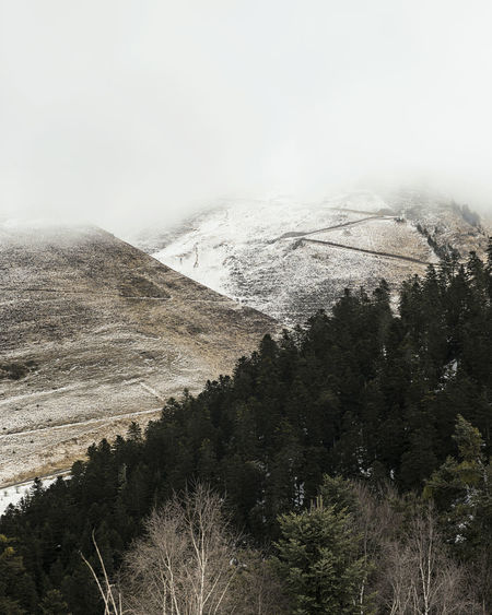 Nature Photography Pyrenees Winter Beauty In Nature Cold Temperature Fog Forest Landscape Mountain Mountain Range Nature No People Outdoors Snow Tranquil Scene Tranquility Tree Winter Peyragudes EyeEmNewHere TheWeekOnEyeEM