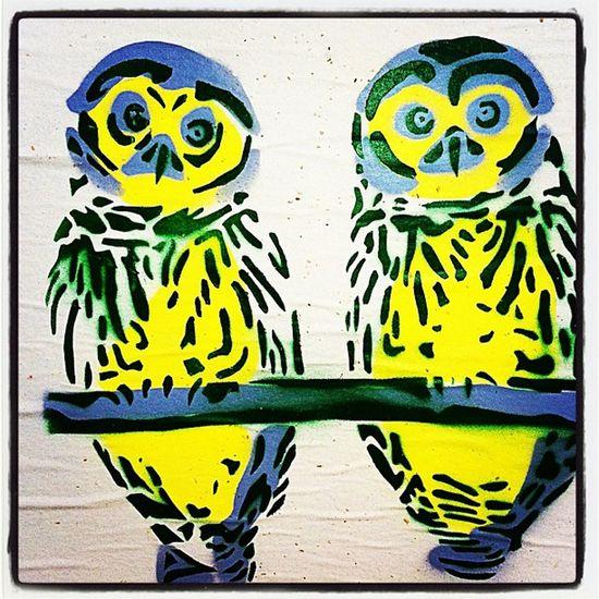#eastvillage #nyc #streetart #owl NYC Streetart Owl Birds Stencil Putabirdonit Eastvillage