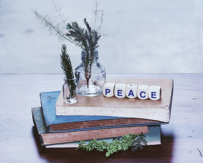 High Angle View Of Peace Toy Blocks And Plants On Books