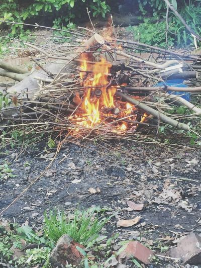 My failed fire😞 comment if u can see what its fuel is i will give you a clue it's not the wood😂😂 Fire Bombfire Failed