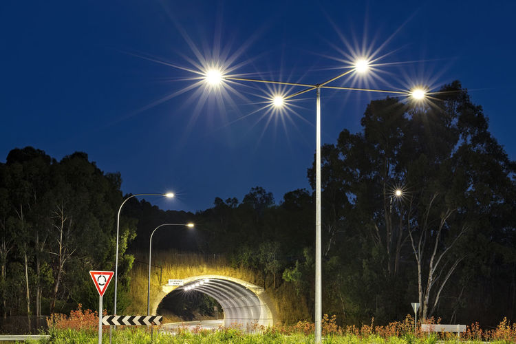 Lighting Equipment Night No People Outdoors Road Sign Sky Street Light Tree Tunnel