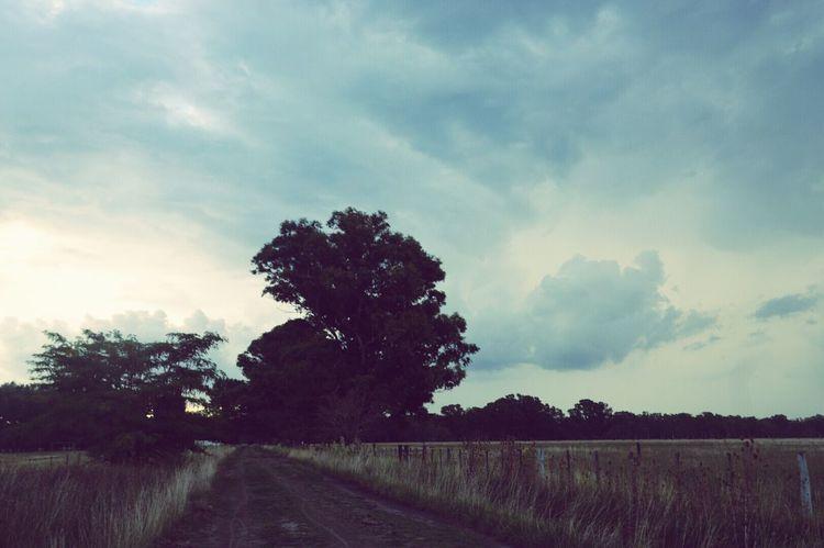 Field Bike Ride Clouds And Sky