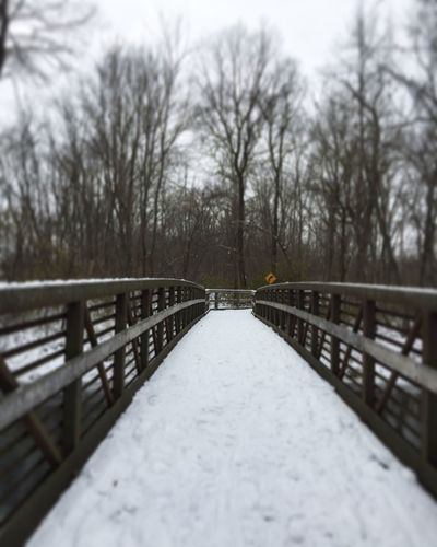 Footbridge Nature Nature Is My Best Friend Railing Winter Tree Snow Weather Tadaa Community Outdoors The Way Forward Selective Focus Cold Temperature Day No People Beauty In Nature Nature Photography From My Point Of View Sky Bare Tree
