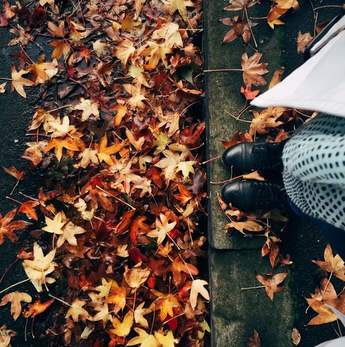 Low section of woman in autumn leaves
