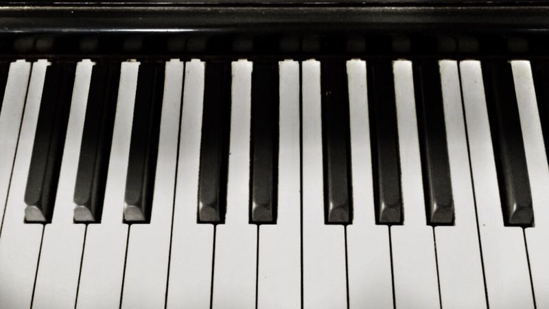Piano Key Black Color Piano Musical Instrument Music Repetition In A Row Close-up Focus On Foreground Musical Equipment Full Frame Hobbies Extreme Close-up No People