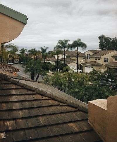 A rainy day in Southern California Gloomy Day Built Structure Architecture House Tree Sky Outdoors Roof Day No People Suburbs Palm Trees Orange County California Cloudy Gray