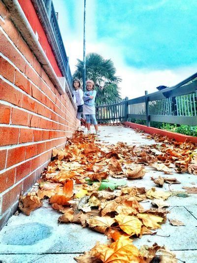 - la nuova stagione - nuovi colori 🍁 - новый сезон - новые цвета🍁 осень Италия осенние листья листопад осеннеенастроение Autunno