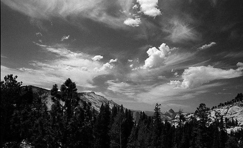 Yosemite National Park, Half Dome in the distance. Bnw Yosemite Blackandwhite Nature_bw Landscape_bw Taking Photos Eye4photography
