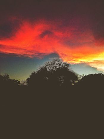 Rainbowlike sunset Sunset_collection Sunset #sun #clouds #skylovers #sky #nature #beautifulinnature #naturalbeauty #photography #landscape Sunset And Clouds  Sunset_captures Sunset Silhouettes Sunsetlover CHWYLWY