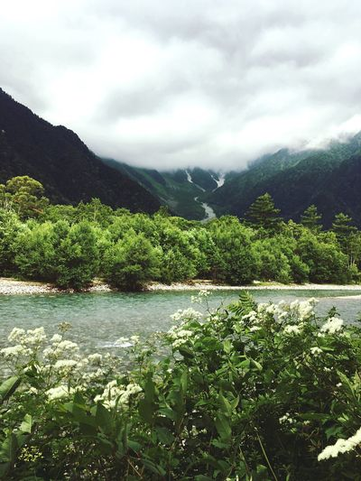 Mountain Beauty In Nature Outdoors Landscape Forest Kamikochi