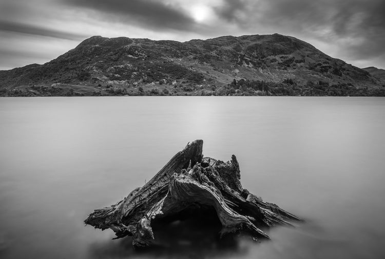 Cumbria England UK Debris Lake District Moody Sky Tree Ullswater Beauty In Nature Black And White u Tranquility Lake Landscape Monochrome Mountain Mountain Range Nature No People Outdoors Scenics Sky Tourism Tranquil Scene Water Waterfront view View