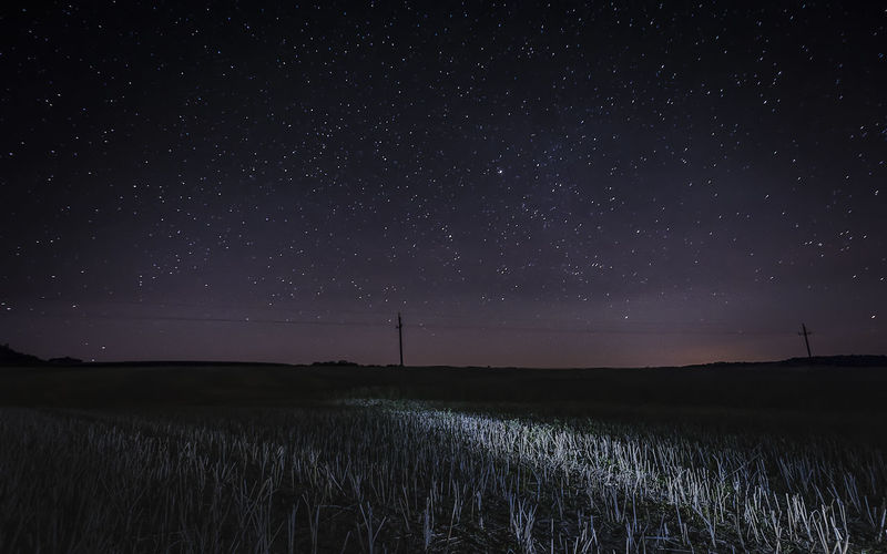 Scenic view of grassy field against starry sky