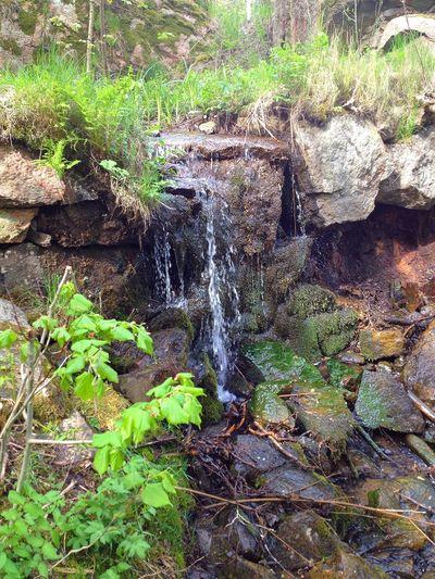 Bäckebolsbäckens vattenfall vid Fredlundsvägen Backa Taking Photos Enjoying Life Relaxing Gothenburg