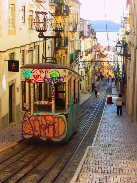 Now and forever! Architecture Building Exterior City City Life Elevador Graffiti Art Lisboa Lovin It Outdoors Portugal Steep Slope Sunny Days Tram View From Above Travel Photography Travel Destinations Lisboalovers Lisboa Streetphotography Azulejos Lisbonlovers Lisbon Favourite Places Portugal Oficial Fotos Colection EyeEm© Portugal Is Beautiful Environmental Conservation The Street Photographer - 2017 EyeEm Awards Cable Car Cobblestone Overhead Cable Car Rail Transportation