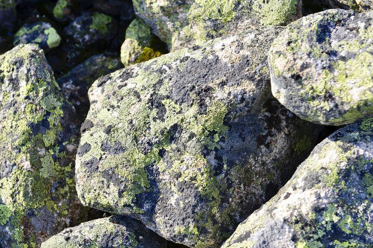 Rock Solid Rock