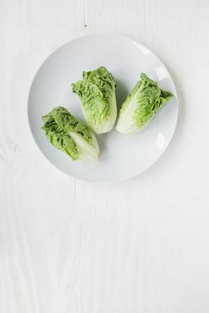 Three lettuce hearts on a white plate. Going vegan. Dieting. Vegan Vegetarian Diet Dietfood Green Simplicity Food Foodphotography Diet & Fitness Dieting Dieta Green Color Minimalism