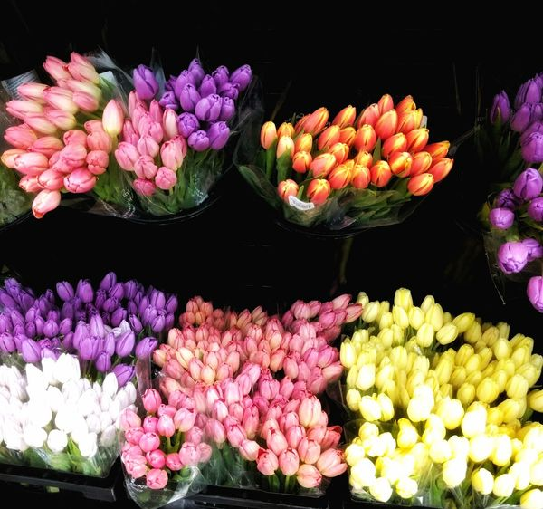 EyeEm Diversity Flower Freshness Beauty In Nature Pink Color No People Flower Head Supermarket Tulips Diversity Variety Flowers Flower Photography Multi Colored Arrangement Nature Variation Flower Collection